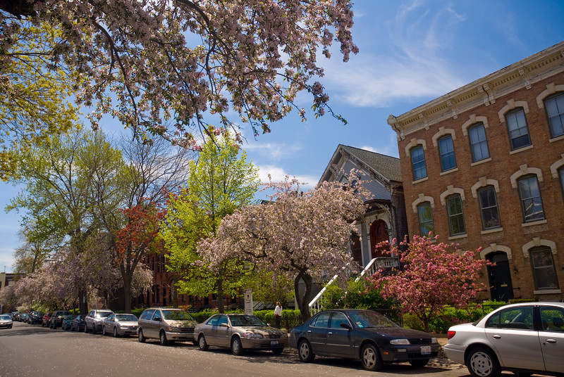 Old Town Neighborhood in Spring