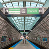 CTA Chicago Transit Authority Cermak-McCormick Place Station green line elevated train tracks by Ross Barney Architects