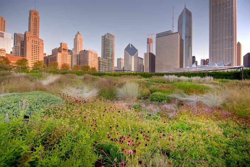 Lurie Garden in Millennium Park