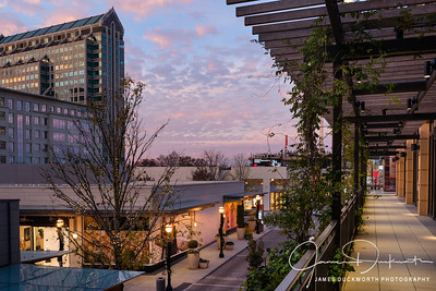 Shops of Buckhead 2016 Holiday Season IV