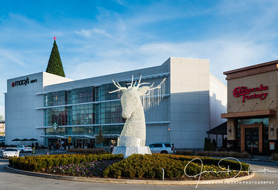 Holiday Decorations at Lenox Mall