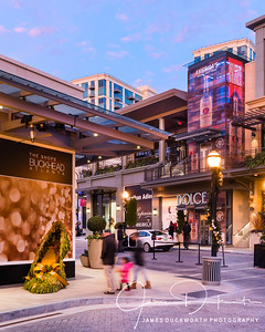 Shops of Buckhead 2016 Holiday Season V Vertical