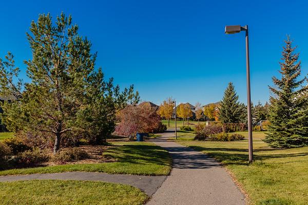 Arbor Creek Park