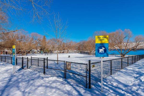 Caswell Dog Park