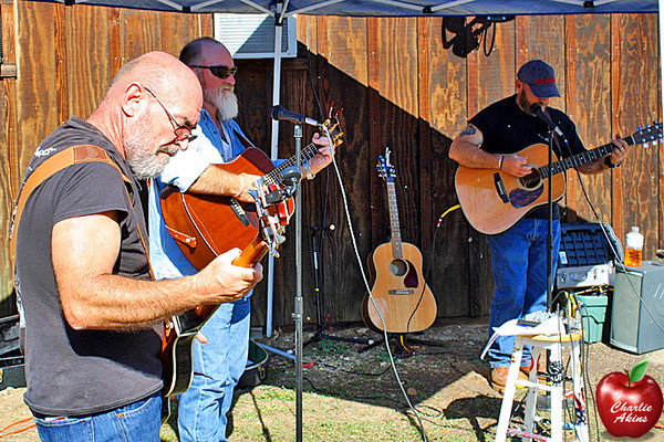 These brothers played bluegrass music at the event.