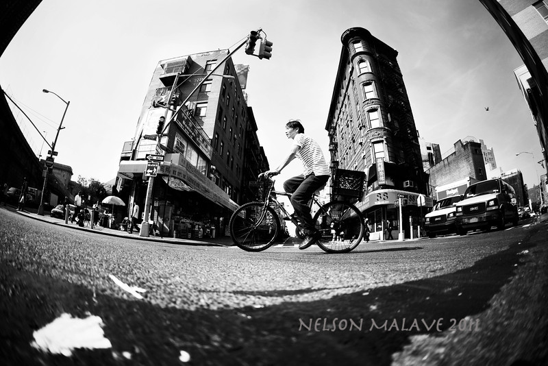 IMAGE: http://phlotography.smugmug.com/Nelson-Malave/May-2011/i-TGKWkQc/0/L/IMG4991-L.jpg