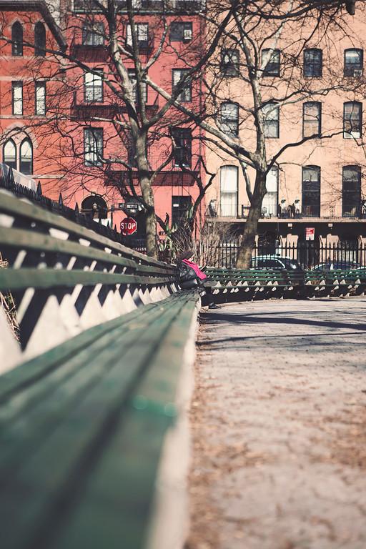 IMAGE: https://photos.smugmug.com/Nelson-Malave/NYC-2020/Winter-Spring-NYC-202/i-8LbQfTG/0/b5b7e9bb/XL/IMG_4415f-XL.jpg