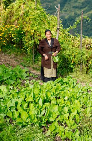 Khari Khola, Nepal