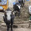 Namche Bazar<br /> Namche Bazar