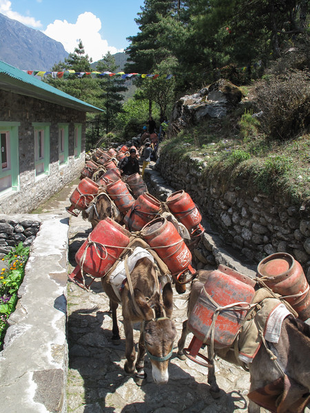 lege gasflessen van Everest Base camp . . .
