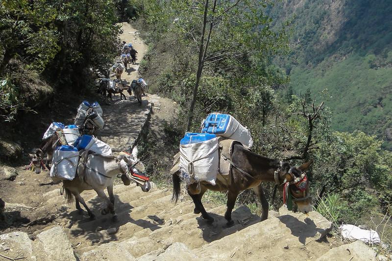 de hoofdweg in het dal