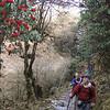 onderweg naar Pangkongma La (3173m)