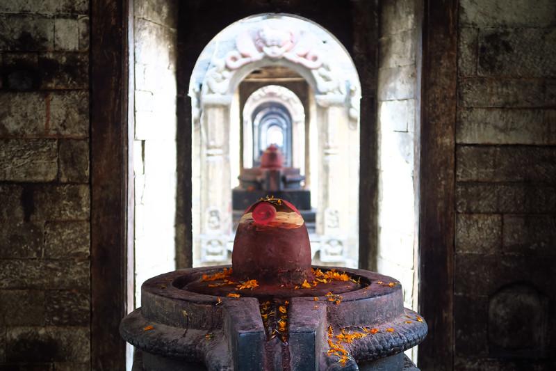 Touring Pashupatinath Temple