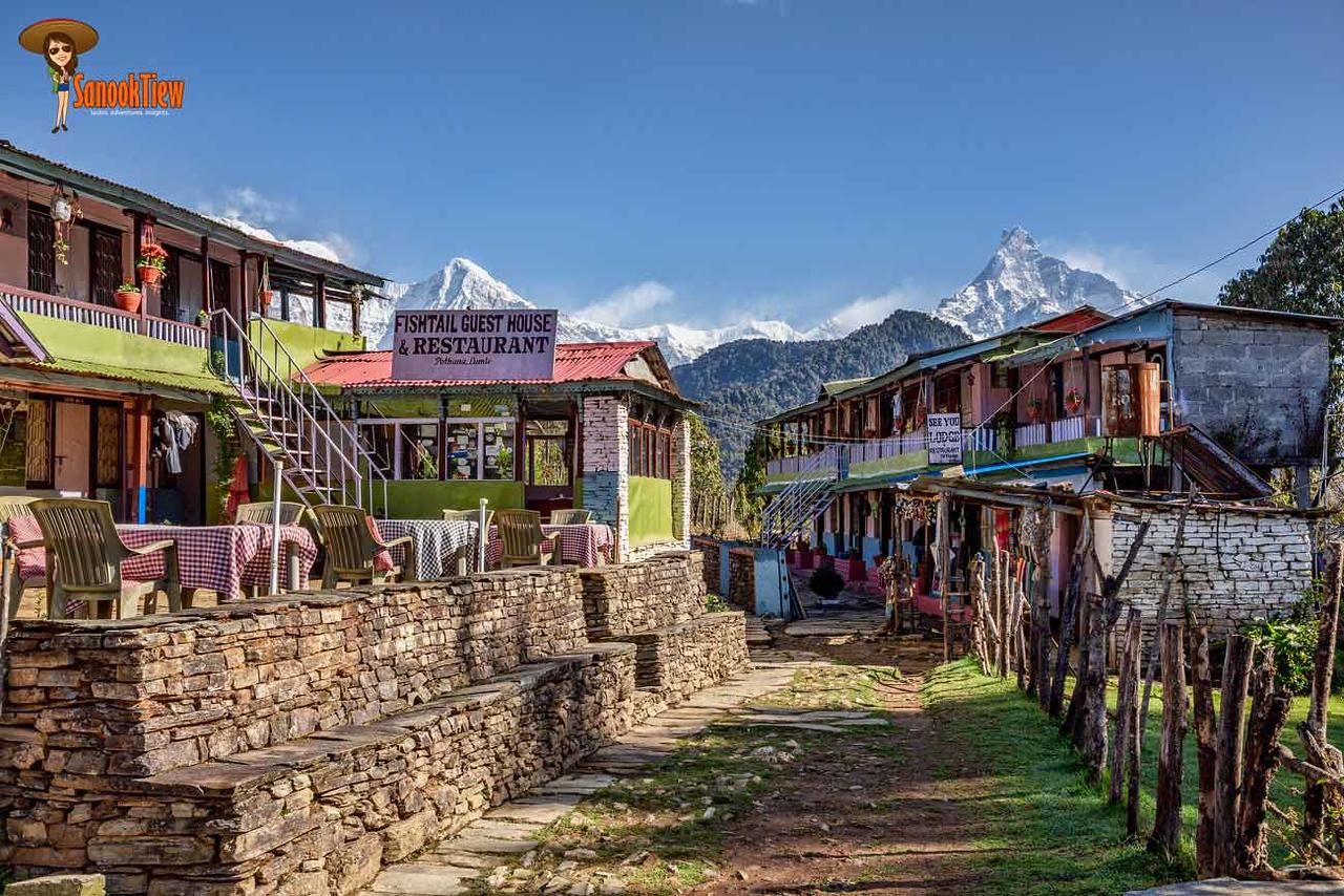Mardi Himal trekking Nepal เทรคกิ้ง มาดิฮิมาล เนปาล Pothana
