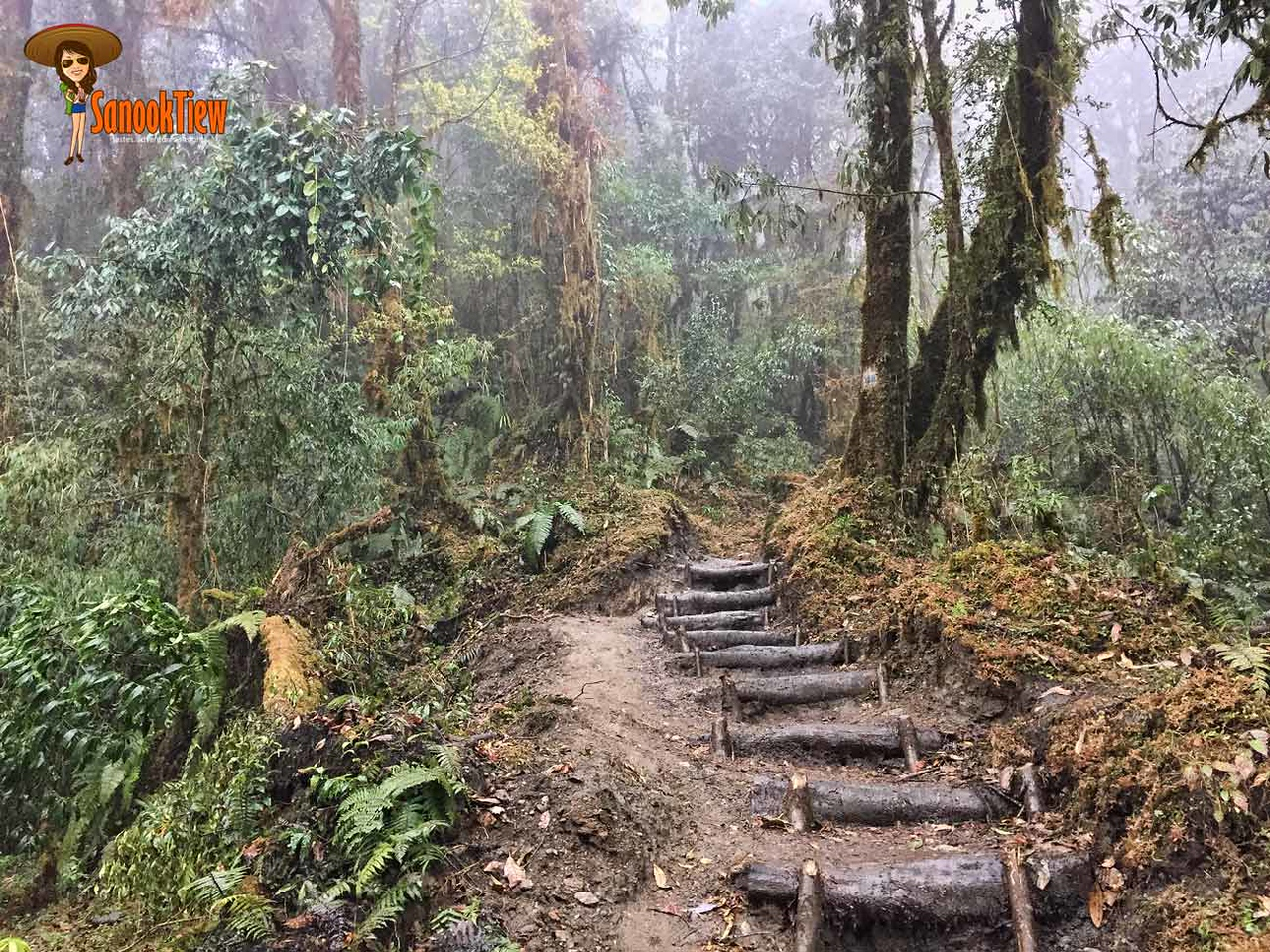 Mardi Himal trekking Nepal เทรคกิ้ง มาดิฮิมาล เนปาล