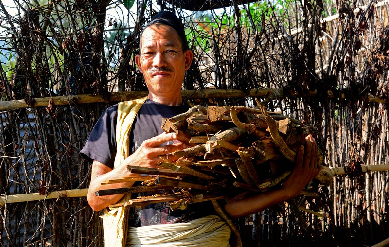 There is no fuel to cook rice -  this man collects wood from the nearby forest even though cutting of trees is  forbidden.