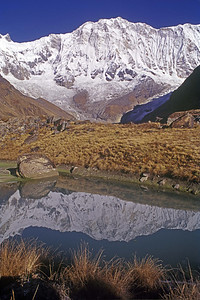 Annapurna South wall from the base camp (ABC)