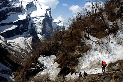 A trekker heads down the trail between Macchapuchare Base Camp and Deorali