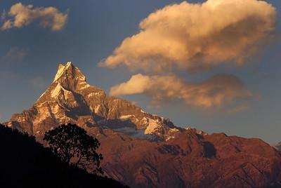 Machapuchare at sunset from Pothana on the Annapurna Base camp trek.