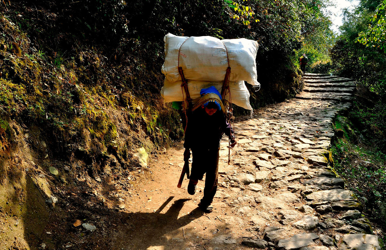 The long walk starts - a porter on the trail near Lukla heading to Namche Bazar.