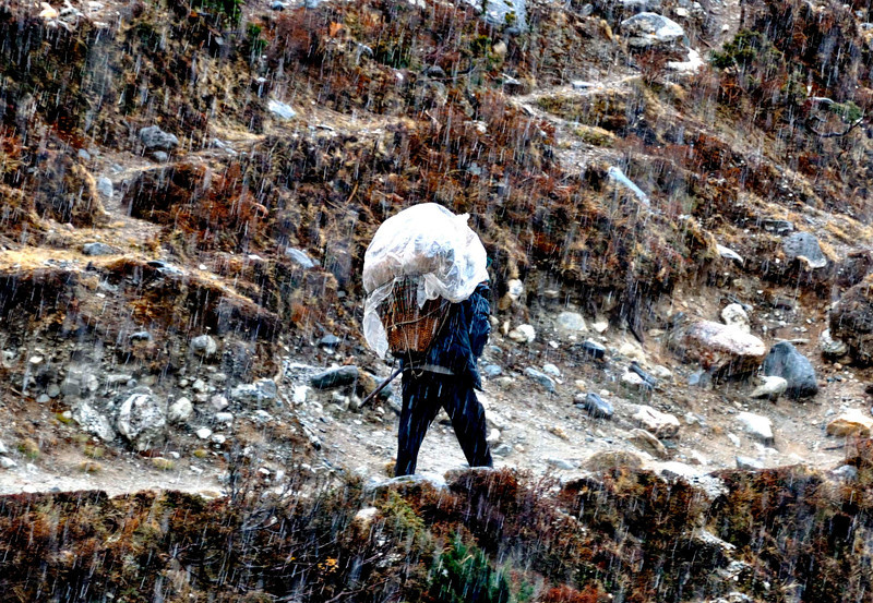 Snow is no deterrent for this intrepid porter as he walks from Pangboche to Dingboche