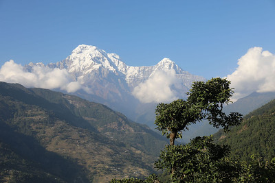 Annapurna range from Gurung Lodge