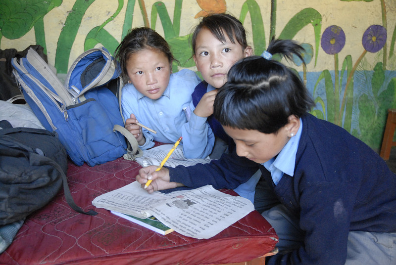 The children throughout Nepal are very studious and take thier education seriously. Every child learns thier native dialect, in this case Tibetan, Nepali and Englsih.
