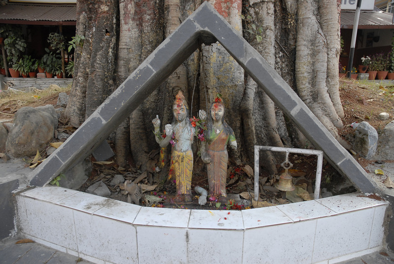 In the middle of the street at Lakeside there is a large tree that has these small Hindu dieties.