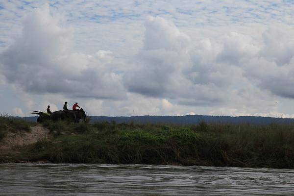 Lokalski jeżdżą na słoniach