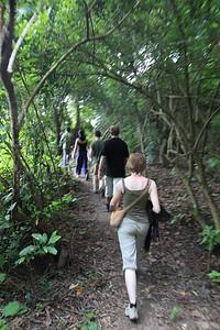 W dżungli :)