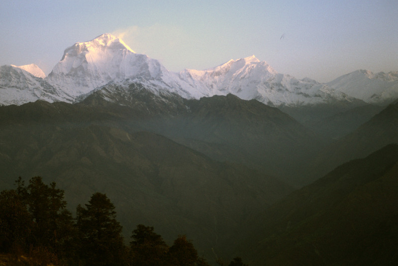 860324, day 5. Ghorepani<br /> Rest day. Morning views towards Dhaulagiri (8167 m) and Annapurna (8091 m) from Poon hill (3200 m) outside Ghorepani. To the right of Dhaulagiri I is Tukche peak, 6920 m