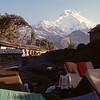 Our camp in Tadapani
