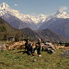 Just above Ghandrung village. to the left Hiunchuli, 6441 m