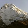 860326, day 7. Tadapani-Landrung<br /> Annapurna dakshin(south), 7219 m