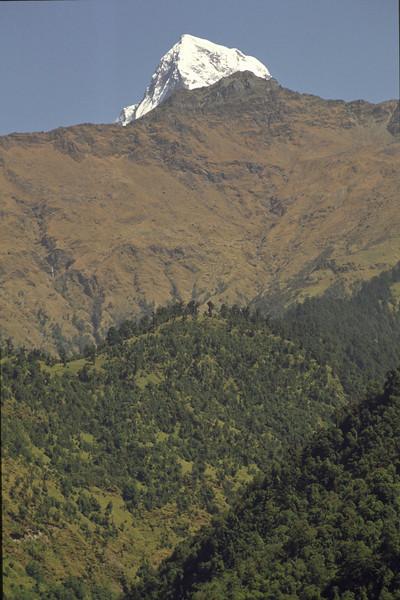 Annapurna Dakshin, 7219 m