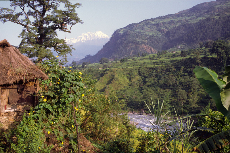 We follow Marsyangdi river. Lamjung himal, 7000 m, in the distance.