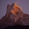 Sunrise on Machhapuchhre (elevation 6993 m; 22,943 ft).  It was essentially climbed in 1957, but the climbers agreed to stop 50 m short of the summit because the mountain is sacred to the Gurungs as the abode of Shiva.  Climbing is no longer allowed.