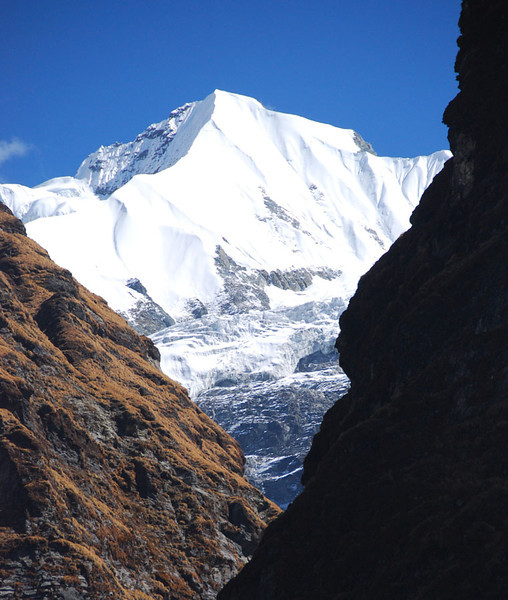 Gangapurna (elevation 7454 m; 24,455 ft) as seen from the steep-walled upper Modi Khola valley.