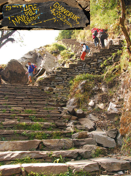 "The trail itself is often rock steps that go straight up the hillside. These ""Gurung staircases"" have been built over hundreds of years, and the workmanship is amazing.  You know it's serious when the trail signs give the number of steps rather than distance or time to the next village.  The sign says Naya Pul to Ghandruk is 13,100 steps, which seems about right."