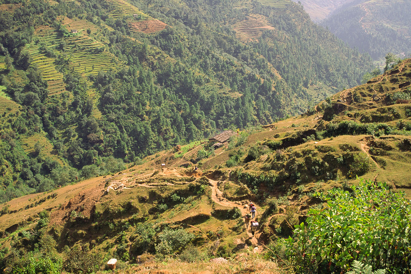 931010, day 2. Jiri-Bhandar<br /> From Jiri, 1935 m, we climb a small pass to 2400 m, descend to Khimti khola for a lunch at Shivalaya (Shiva's place), 1800 m.