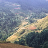 Road to Junbesi, 2700 m