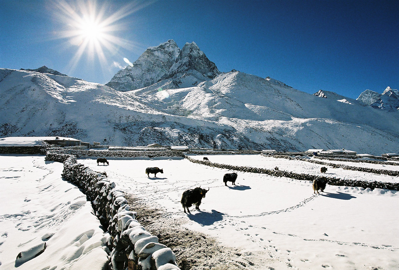 Early morning sun over the snow covered fields, Dingboche