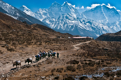 Life goes on in the Himalayas near Everest Base Camp