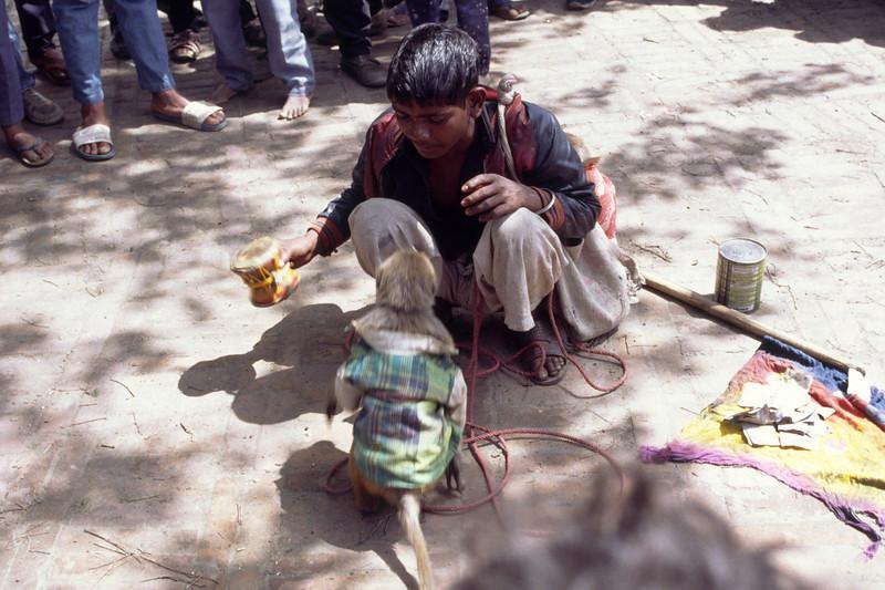 Indian boy with monkey.