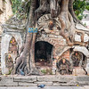Root Deity
