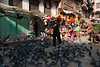 A man feeding pigeons in the small market around a Buddist temple in Tamel.