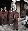 Monks (Buddhists), Boudhanath Temple, Kathmandu, Nepal (Bronica 645)