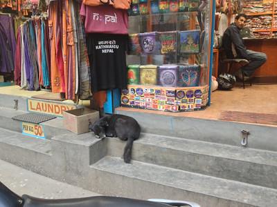Nancy Roger's Nepal '12 photos