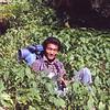 My sherpa, Temba Lama