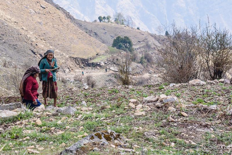 Women Working the Fields